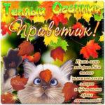 Картинки для поднятия настроения осень