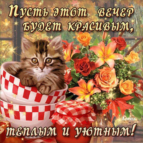 Уютный вечер картинки цветы кот романтика