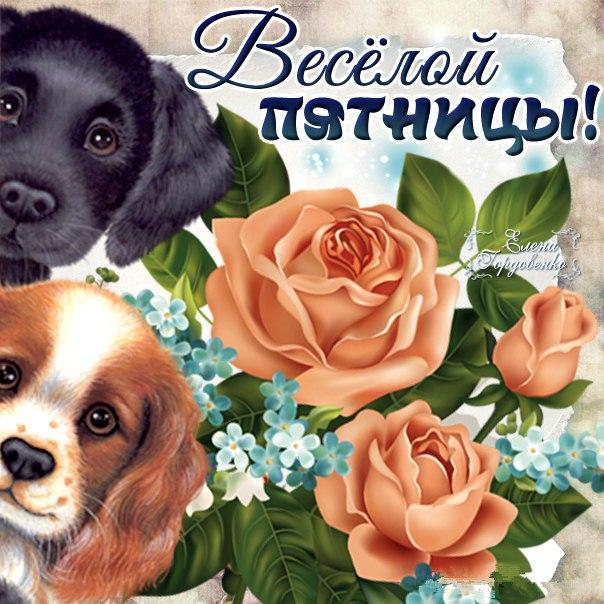 Очень приятная веселая открытка пятница со щенками