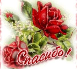 открытки спасибо цветы