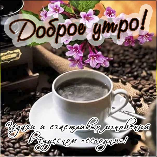 Доброе утро, удачного утра, чашка кофе, цветы утром, счастливых мгновений