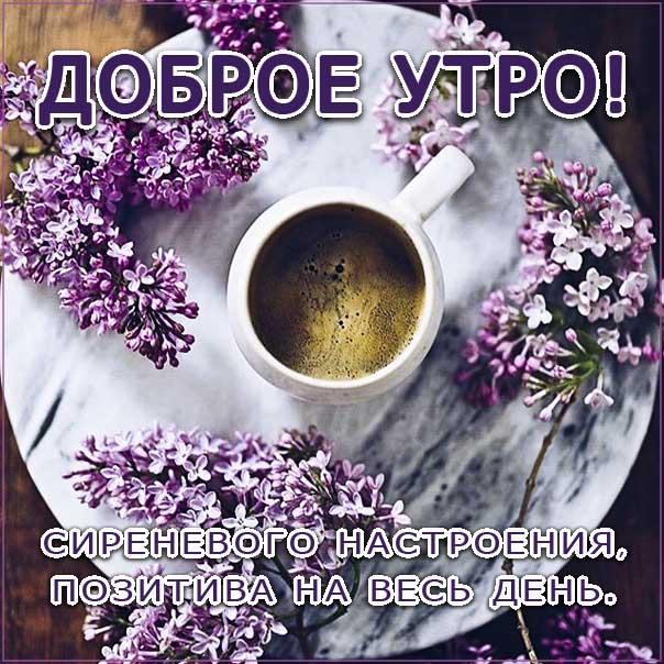 с добрым утром открытки, утро цветы, сирень кофе, чудесного тебе утра, романтического утра, удачного утра, сказочно красивого утра, сладкого утра, восхитительного утра, бодрого тебе утра, солнечного утра, чудесных эмоций