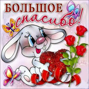 Спасибо картинки, большое спасибо, зайчик, мультяшка, красивая открытка, благодарю.