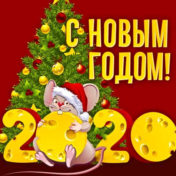 Новый Год белой крысы 2020 картинки