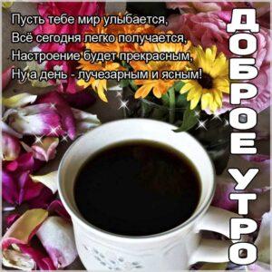 удачного утра, сказочно красивого утра, сладкого утра, восхитительного утра, бодрого тебе утра, солнечного утра, чудесных эмоций