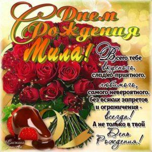 Мила с Днем рождения картинки поздравить. Цветы, букет, розы, надпись, стихотворение, стих, с бликами, мерцающие, фразы, огромный букет, красные розы, узоры.