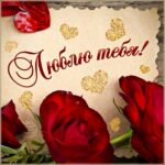Картинка любим женщин розы