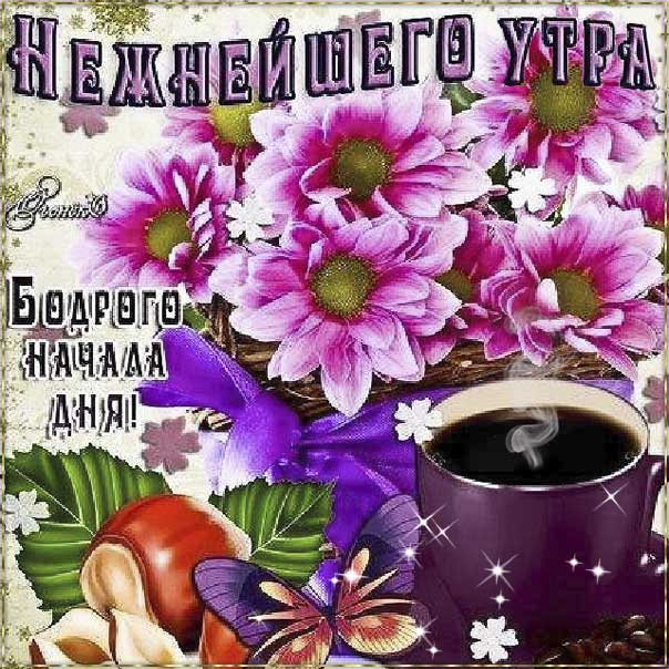 Картинка желаю бодрого утра. С добрым утром отличного настроения, позитива на день, цветы, с текстом, нежного утра, эффекты, мигающая, утренний позитив, кофе.