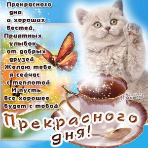 Большие открытки хорошего дня