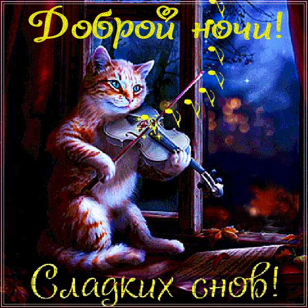 спокойной ночи, доброй ночи, сладких снов, приятных снов, нежных сновидений, снов хороших, цветных снов, прекрасных снов