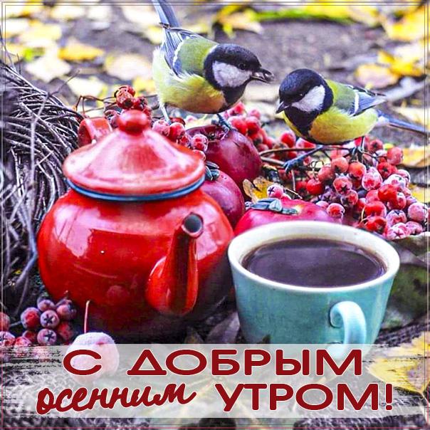 доброе осеннее утро, с добрым осенним утром, позитивного утра и улыбок, синички осень картинка утро, про утро картинка, утро рябина осень, приветствие осеннее утреннее