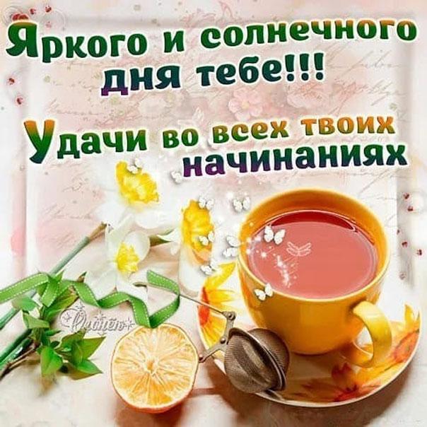 Открытки с солнечным утром и днем и хорошим настроением с пожеланиями, анимашки виолетта открытка