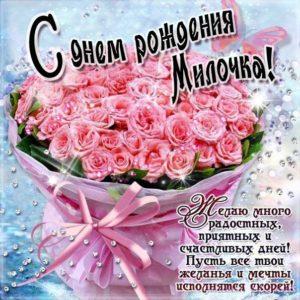 Мила c Днем рождения открытка. Розы, букет роз, подарок, красивая надпись, со стихом, мигающая, картинки, большой букет, шикарные розы, Милочка, поздравление, картинка, розовые розы.