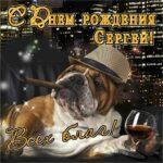 Сергей музыкальная открытка др именины