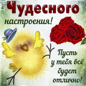 Открытка для чудесного настроения, пожелание с веселым цыплёнком и розами