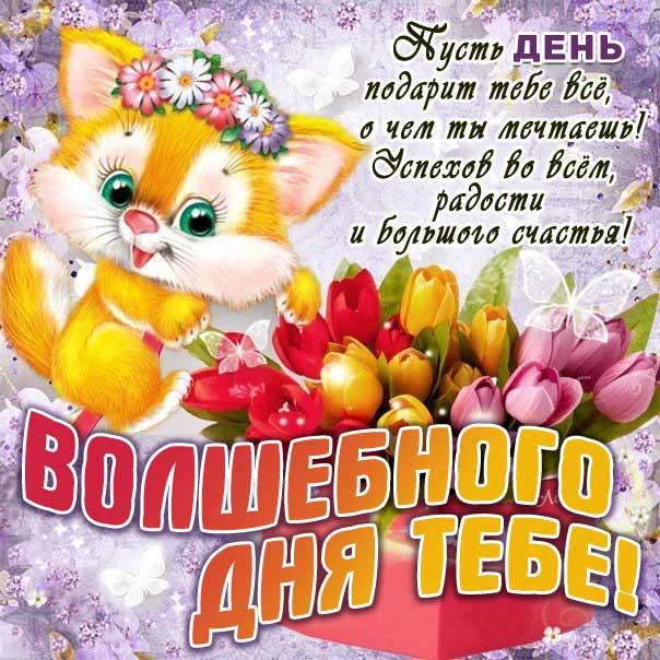 Открытка волшебного дня тебе. Зверушка, мультяшка, цветы, сердечко, текст, красивая надпись, со стихом, мигающая, картинки, пожелание, тюльпаны, котенок.