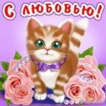 Анимационные открытки я тебя Люблю