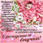 С рождением внучки картинка