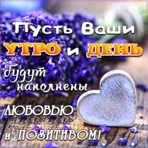 доброе утро, с добрым утром, утренняя улыбка, сердечко картинка утро, про утро картинка, утро цветы, приветствие утреннее