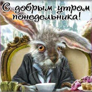 доброе утро понедельник, пожелание настроения с утра, понедельник не доброе утро, позитива на день, утренняя улыбка, чудесного настроения, злая картинка понедельник