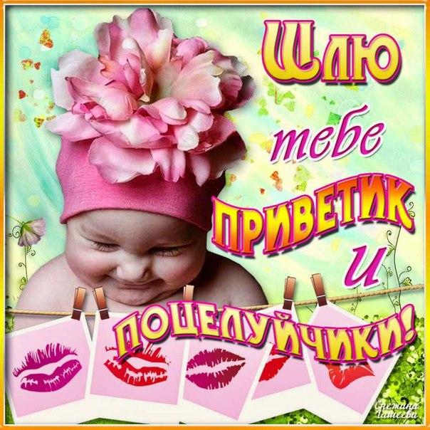 Картинки поцелуй привет, цветов для