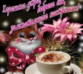 красочные открытки утро