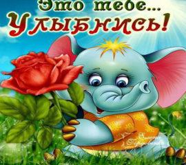Для тебя открытки анимашки